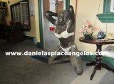 image danielasplace_dans-falling-of-wagon_45-jpg